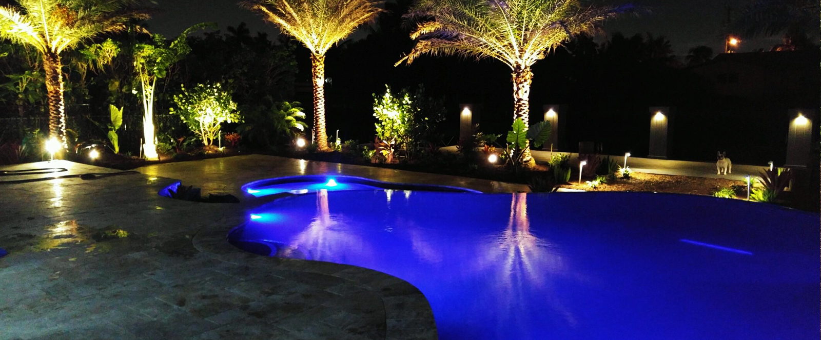 night-time view of a swimming pool with outdoor lighting